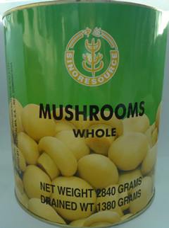 Canned Whole Mushroom
