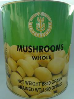 Canned Whole Mushroom